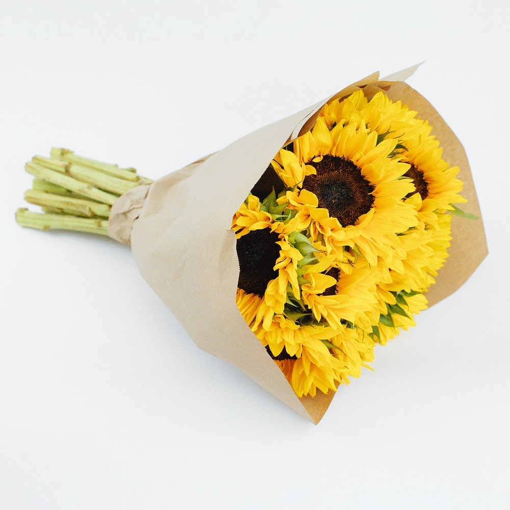 Bumble Bee Sunflowers