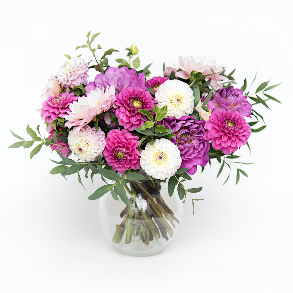Dahlias in a Vase