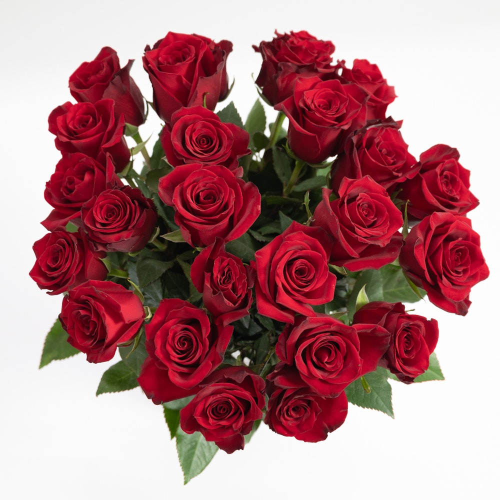 Romance Rouge