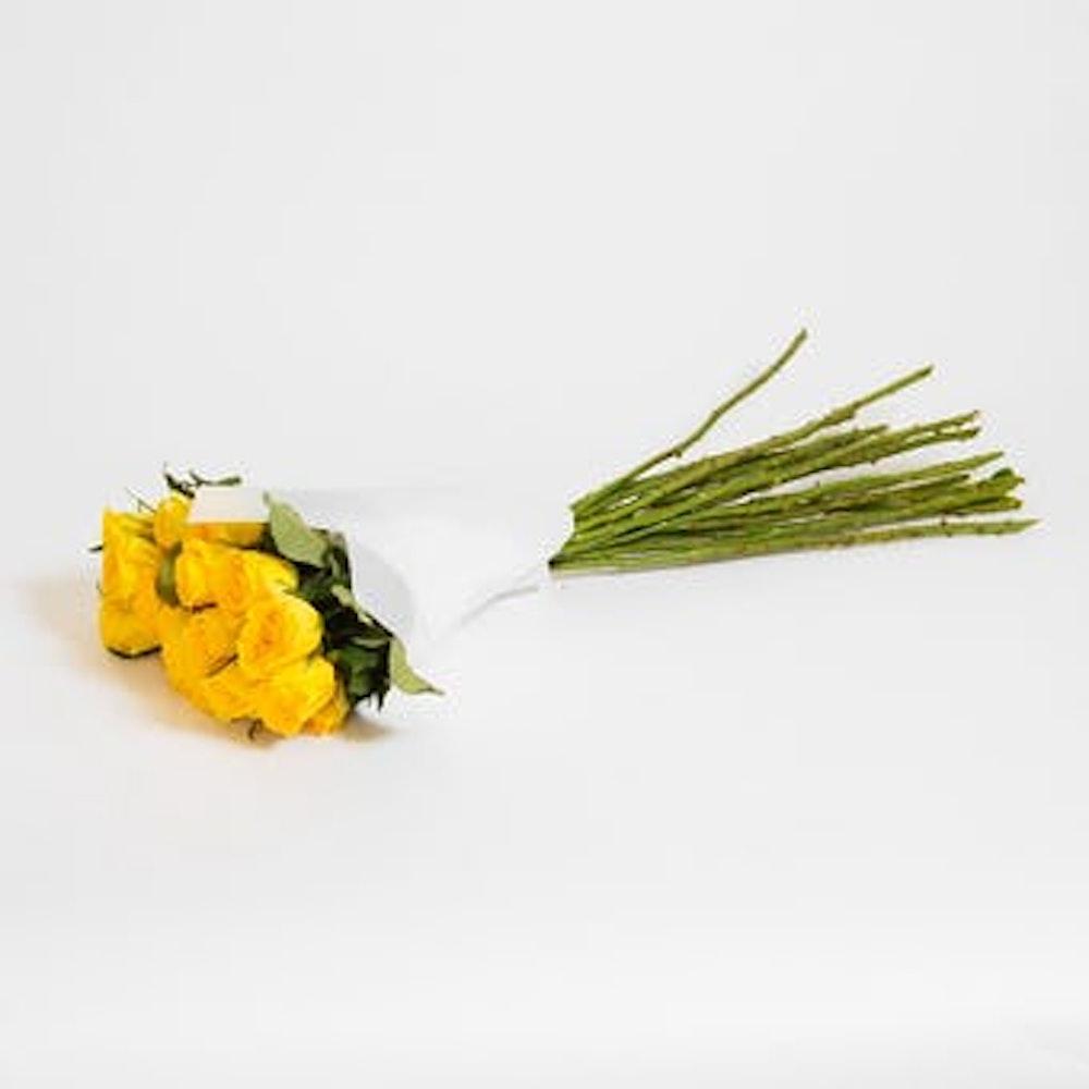 Moonwalk Roses