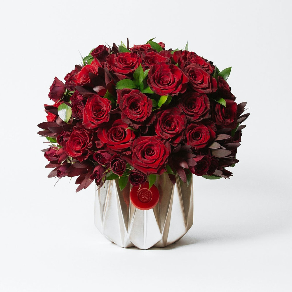 Gold Coast Roses